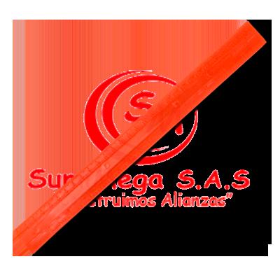 REGLA 31 CM PLASTICA  PROFESIONAL LINEA AZUL (480)