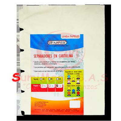 SEPARADOR CARTULINA 105 X 5 BLANCO PAPIER (500)