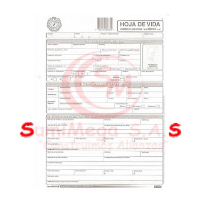 HOJA DE VIDA SENCILLA 10-00 X 20 MINERVA(12)
