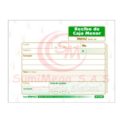 RECIBO DE CAJA MENOR X 100 2002 MINERVA (20)